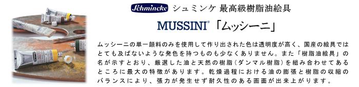 ムッシーニ mussini シュミンケ schmincke 油絵の具 油絵具